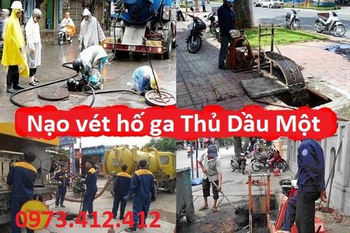 http://moitruongthanhdo.com/upload/images/nao-vet-go-ga-thu-dau-mot(2).jpg